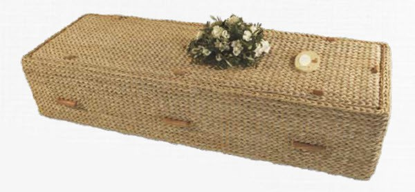 Banana Leaf Coffin - naturally green